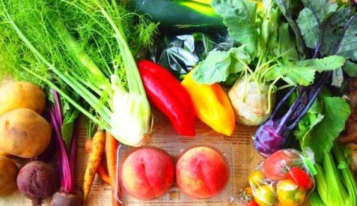 色を意識すれば一人でも健康な食生活が送れる?食卓をカラフルにしよう