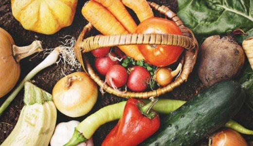 健康を維持するために野菜が欠かせない理由~総合的な栄養素を摂取する~