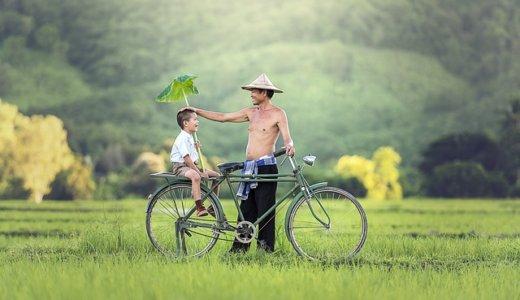 子どもを乗せる自転車カバーはつける?どんなものがいいの?