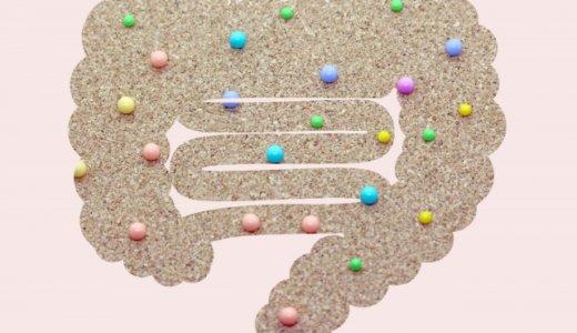 乳酸菌は死滅しても効果がある?とにかく摂取することで得るメリット