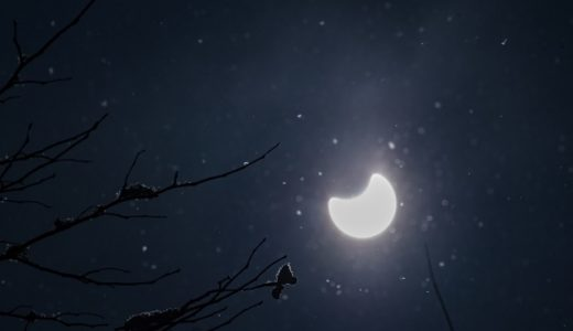 気になるお月見の由来とは!?その成り立ちや意味をご紹介
