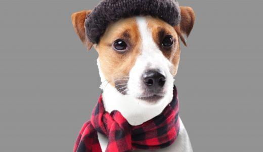 寒い季節に暖房代を節約したい…そんなときは電熱ウェアが大活躍!